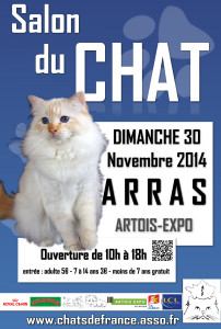 salon du chat artois expo centre d 39 expositions et de